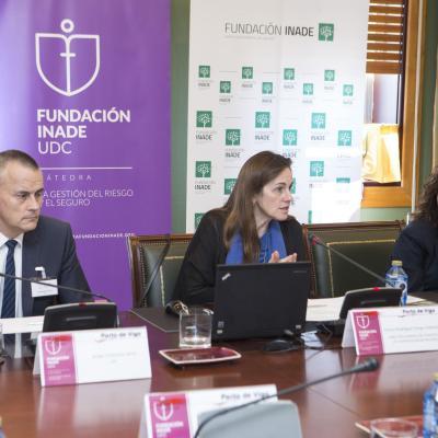 Flavia Rodríguez-Ponga, Directora General del CCS durante su intervención